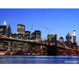 Fototapet New York FTS0107